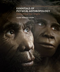 Essentials of Physical Anthropology Discovering Our Origins