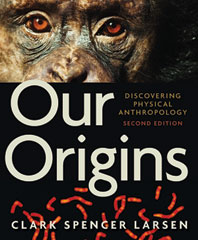 Our Origins Discovering Physical Anthropology Second Edition
